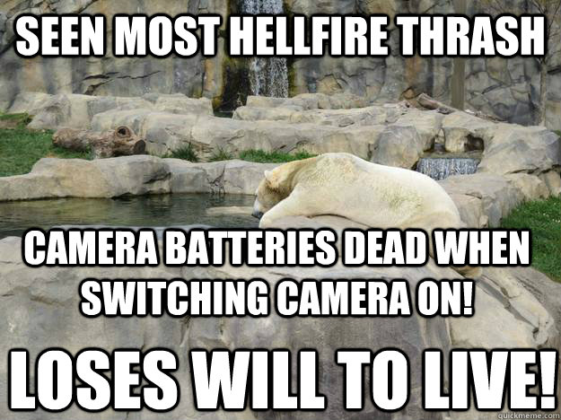 seen most hellfire thrash camera batteries dead when switching camera on! loses will to live! - seen most hellfire thrash camera batteries dead when switching camera on! loses will to live!  Contemplative Polar Bear