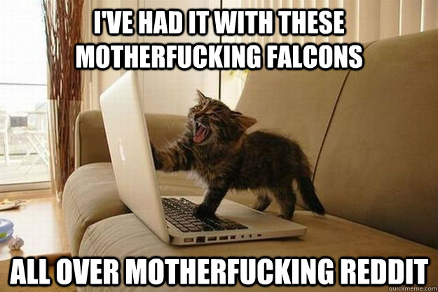 I've had it with these motherfucking falcons All over motherfucking Reddit  Mad Cat