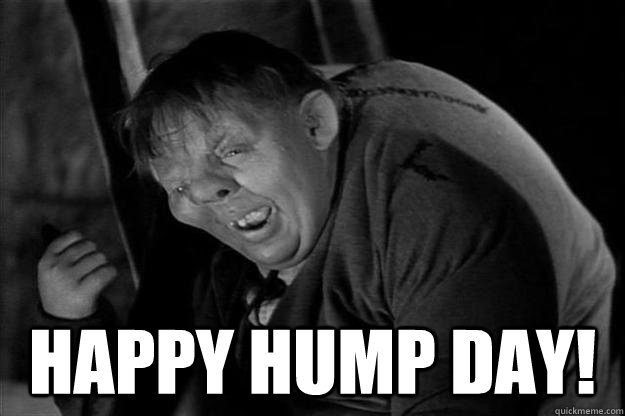 Happy Hump Day! -  Happy Hump Day!  Happy Hump Day Quasimodo