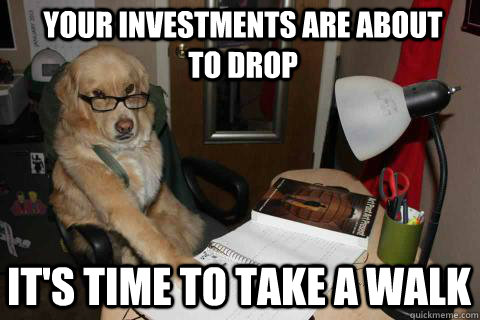 Your investments are about to drop It's time to take a walk - Your investments are about to drop It's time to take a walk  Financial Advice Dog