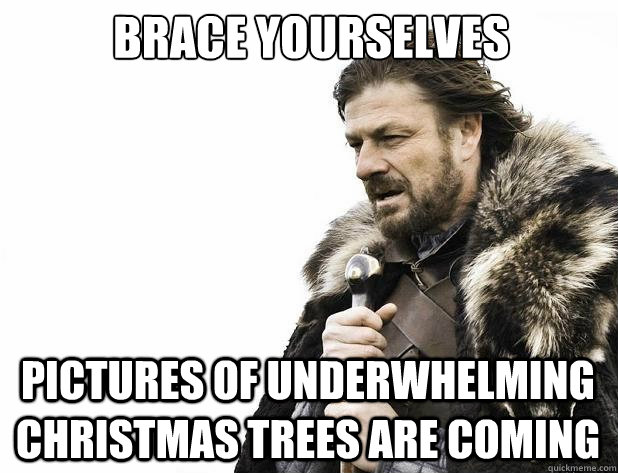 Brace yourselves Pictures of underwhelming christmas trees are coming - Brace yourselves Pictures of underwhelming christmas trees are coming  Misc