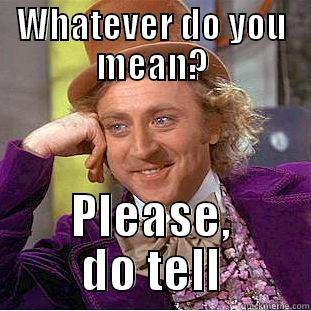 what do you mean? - WHATEVER DO YOU MEAN? PLEASE, DO TELL Condescending Wonka
