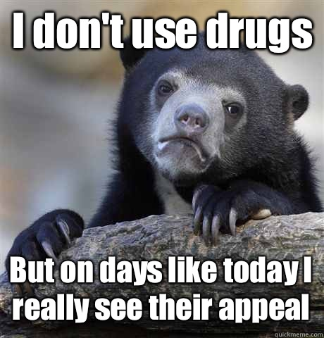 I don't use drugs But on days like today I really see their appeal - I don't use drugs But on days like today I really see their appeal  Confession Bear