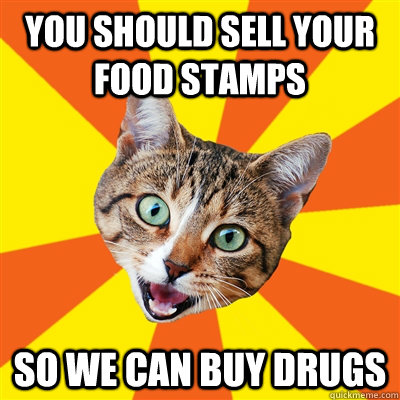you should sell your food stamps so we can buy drugs - you should sell your food stamps so we can buy drugs  Bad Advice Cat