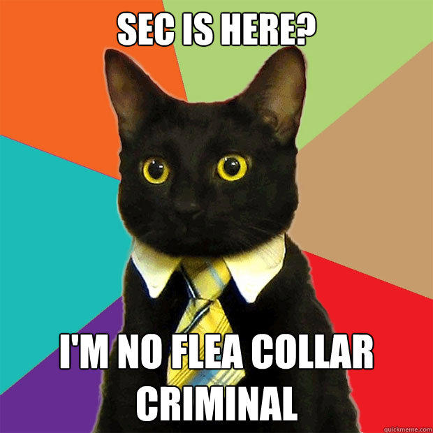 SEC is here? I'm no flea collar criminal - SEC is here? I'm no flea collar criminal  Business Cat