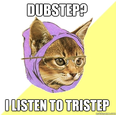 Dubstep? I listen to Tristep - Dubstep? I listen to Tristep  Hipster Kitty