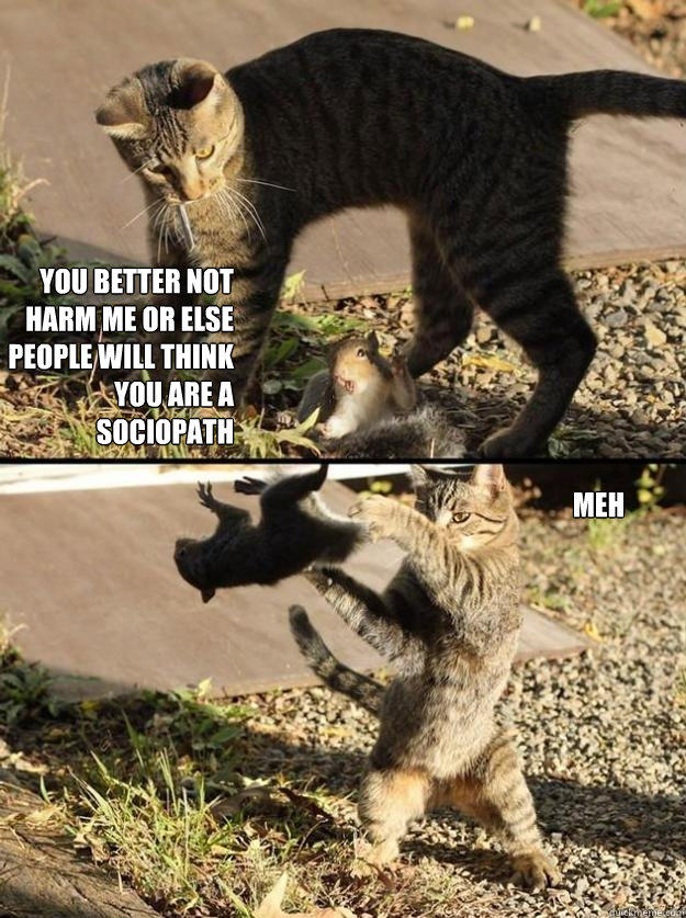 You better not harm me or else people will think you are a sociopath meh  Annoying Squirrel