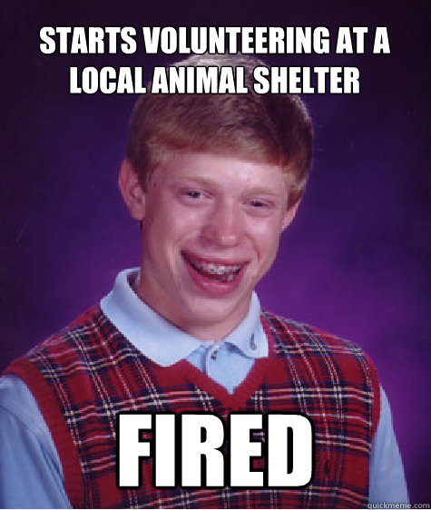 Starts volunteering at a local animal shelter Fired - Starts volunteering at a local animal shelter Fired  Bad Luck Brian