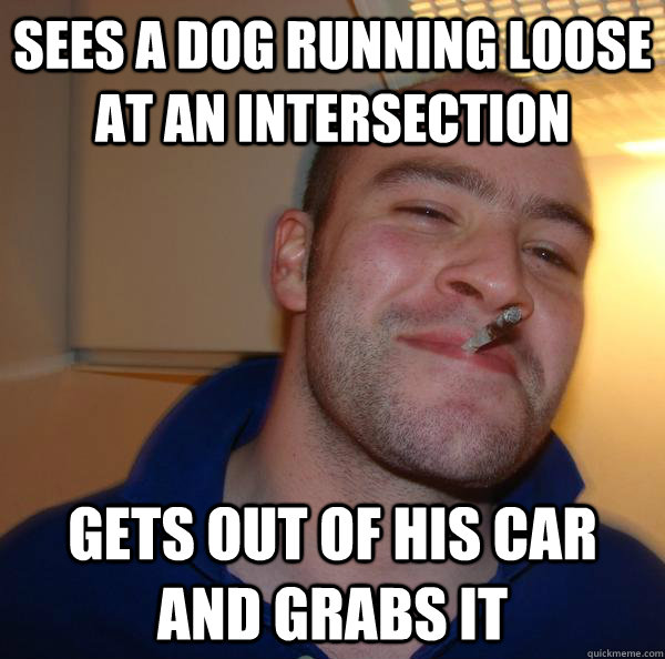 sees a dog running loose at an intersection gets out of his car and grabs it - sees a dog running loose at an intersection gets out of his car and grabs it  Misc
