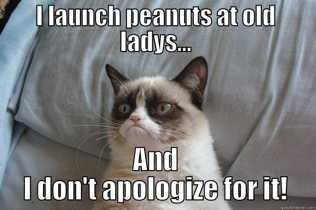 I LAUNCH PEANUTS AT OLD LADYS... AND I DON'T APOLOGIZE FOR IT! Grumpy Cat