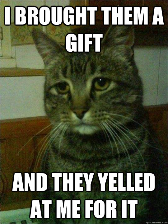 I brought them a gift And they yelled at me for it - I brought them a gift And they yelled at me for it  Depressed cat