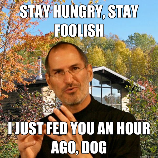 stay hungry, stay foolish i just fed you an hour ago, dog