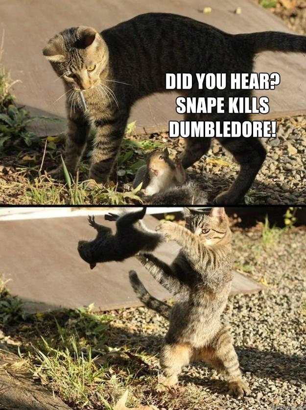 Did you Hear? Snape Kills Dumbledore! - Did you Hear? Snape Kills Dumbledore!  Annoying Squirrel