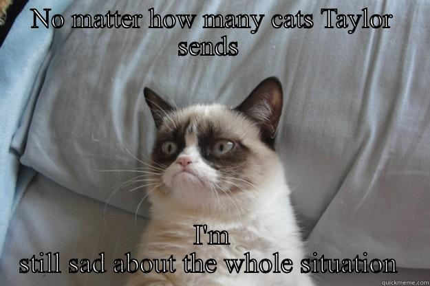 NO MATTER HOW MANY CATS TAYLOR SENDS  I'M STILL SAD ABOUT THE WHOLE SITUATION  Grumpy Cat