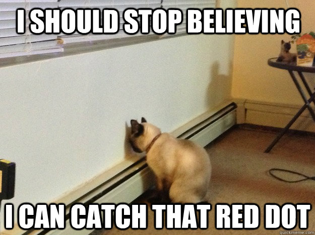 I should stop believing I can catch that red dot