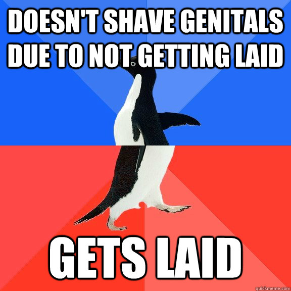 Doesn't shave genitals due to not getting laid Gets laid - Doesn't shave genitals due to not getting laid Gets laid  Socially Awkward Awesome Penguin