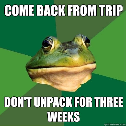 come back from trip don't unpack for three weeks - come back from trip don't unpack for three weeks  Misc