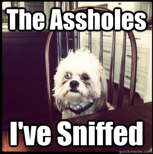 The Assholes I've Sniffed - The Assholes I've Sniffed  Life Hardened Dog