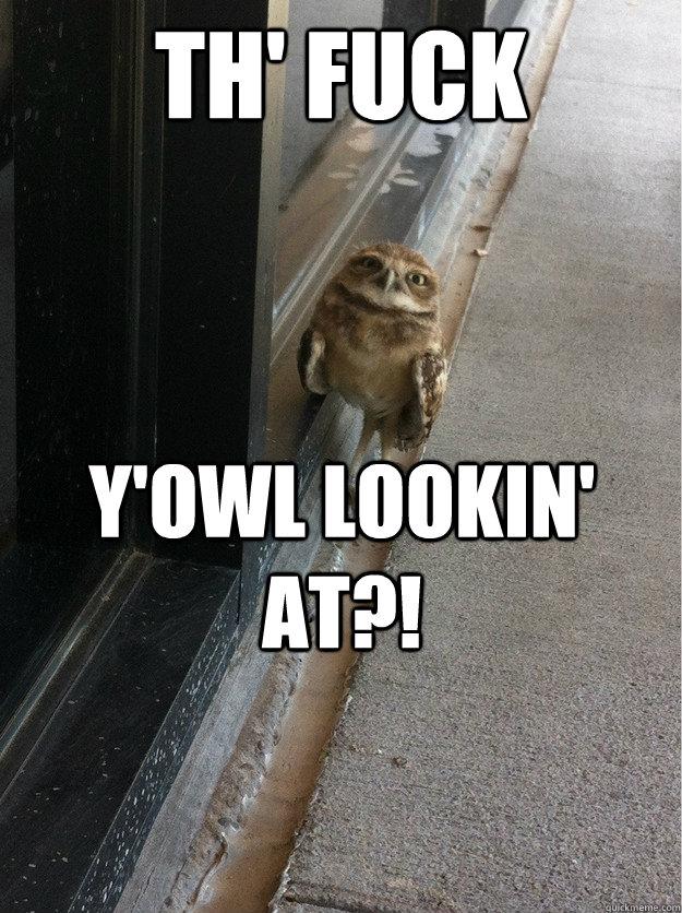 th' fuck Y'owl lookin' at?!