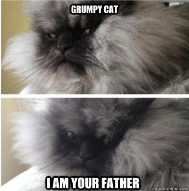 Grumpy Cat I am your father