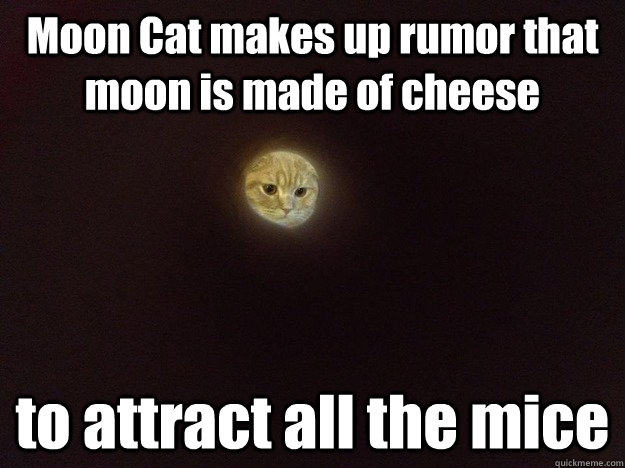 Moon Cat makes up rumor that moon is made of cheese to attract all the mice