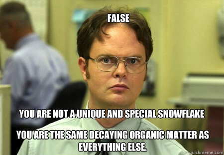 False You are not a unique and special snowflake  You are the same decaying organic matter as everything else.  - False You are not a unique and special snowflake  You are the same decaying organic matter as everything else.   dwight schule knows best