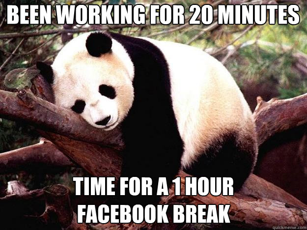 BEEN WORKING FOR 20 MINUTES TIME FOR A 1 HOUR  FACEBOOK BREAK  Procrastination Panda