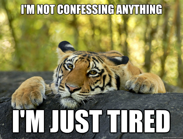 I'm not confessing anything i'm just tired - I'm not confessing anything i'm just tired  Confession Tiger