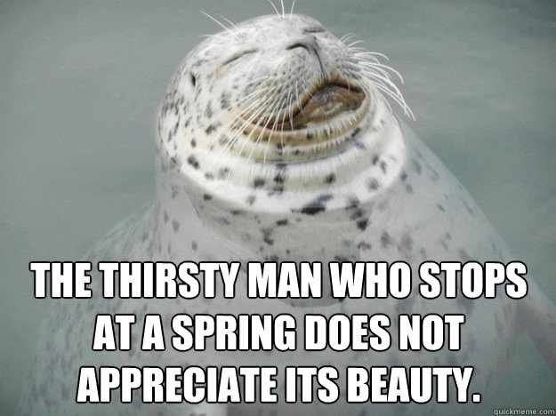 THE thirsty man who stops at a spring does not appreciate its beauty.