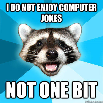 I DO NOT ENJOY COMPUTER JOKES NOT ONE BIT - I DO NOT ENJOY COMPUTER JOKES NOT ONE BIT  Lame Pun Coon