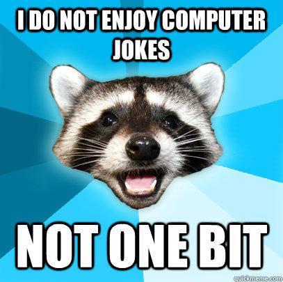 I DO NOT ENJOY COMPUTER JOKES NOT ONE BIT