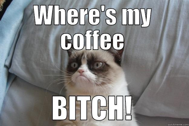 e725e0fcebc39353b5480be8d35a2fabf7249596d49a2a6de20ef48333eb22f9 coffee bitch quickmeme,Wheres My Coffee Meme