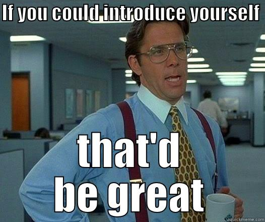 If you could introduce your self  - IF YOU COULD INTRODUCE YOURSELF  THAT'D BE GREAT Office Space Lumbergh