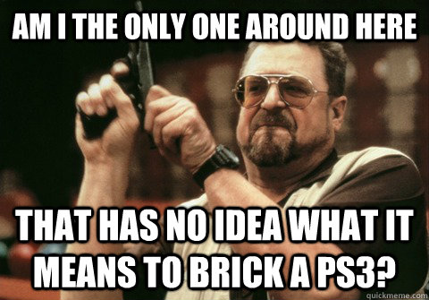 Am I the only one around here that has no idea what it means to brick a PS3? - Am I the only one around here that has no idea what it means to brick a PS3?  Am I the only one