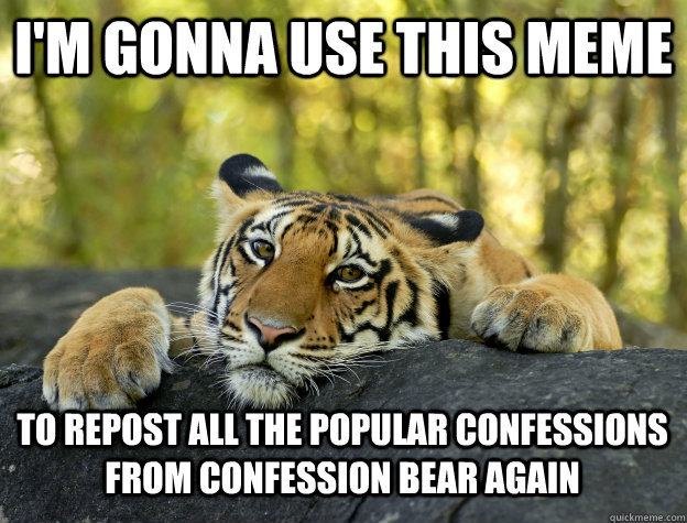 I'm gonna use this meme to repost all the popular confessions from confession bear again