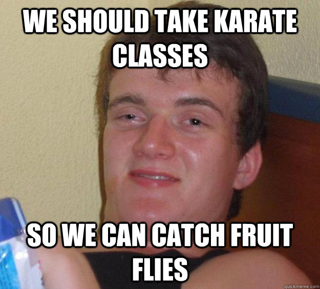 We should take karate cLasses So we can catch fruit flies - We should take karate cLasses So we can catch fruit flies  10 Guy