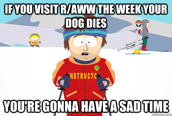 If you visit r/aww the week your dog dies You're gonna have a sad time  Super Cool Ski Instructor
