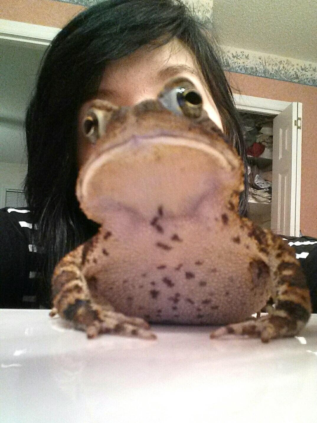 So I turned into a toad last night... -   Misc