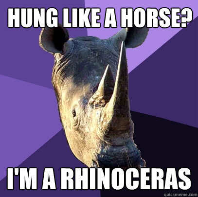 Hung like a horse? I'm a Rhinoceras - Hung like a horse? I'm a Rhinoceras  Sexually Oblivious Rhino