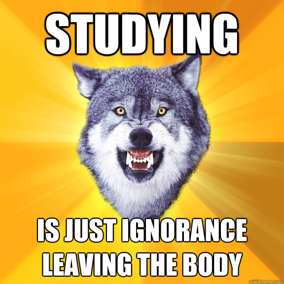 Studying Is just ignorance leaving the body - Studying Is just ignorance leaving the body  Courage Wolf