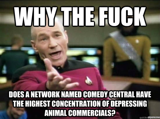 Why the fuck Does a network named comedy central have the highest concentration of depressing animal commercials? - Why the fuck Does a network named comedy central have the highest concentration of depressing animal commercials?  Annoyed Picard HD