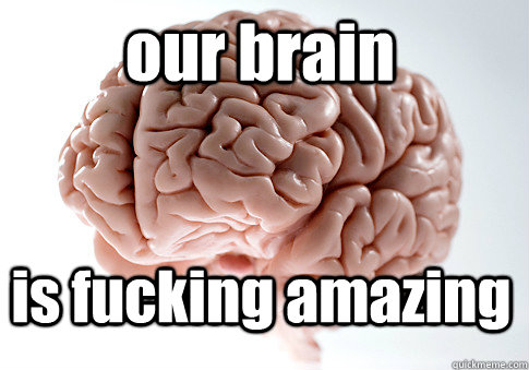 our brain is fucking amazing  - our brain is fucking amazing   Scumbag Brain