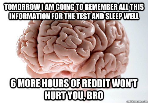 Tomorrow I am going to remember all this information for the test and sleep well 6 more hours of reddit won't hurt you, bro - Tomorrow I am going to remember all this information for the test and sleep well 6 more hours of reddit won't hurt you, bro  Scumbag Brain
