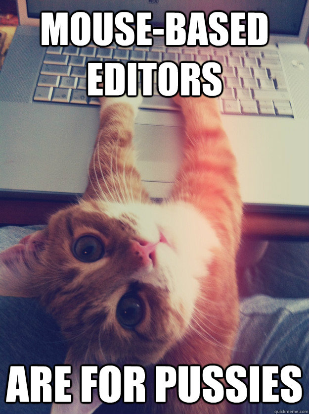 mouse-based editors are for pussies  Programmer Cat
