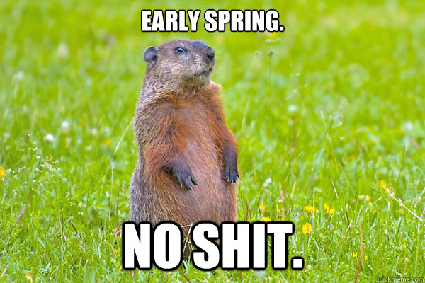 Early spring. No shit.  Groundhog Day