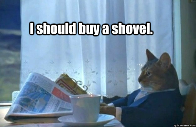 I should buy a shovel. - I should buy a shovel.  Sophisticated Cat is broke