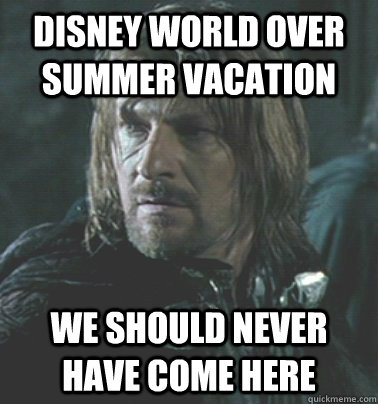 Disney world over summer vacation We should never have come here