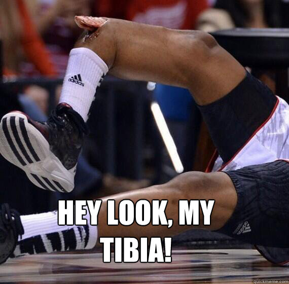 Hey look, my tibia!
