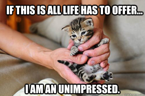 If this is all life has to offer... I am an unimpressed. - If this is all life has to offer... I am an unimpressed.  Misc