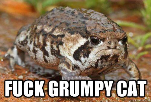 Fuck Grumpy Cat